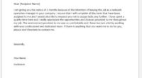Network operation manager resignation letter